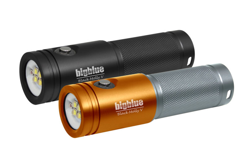 Black Molly V: 2600-Lumen Video Light