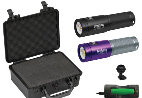 Black Molly IV with Hard Case (Black or Purple)