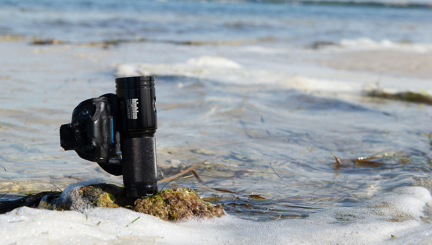 Ready for a Deep Dive into Photo and Video Lights with Bigblue Dive Lights